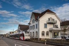 Frauenfelderstrasse-Wängi-5039