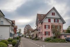 Brühlstrasse-8195