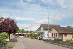 Froheggstrasse-9900