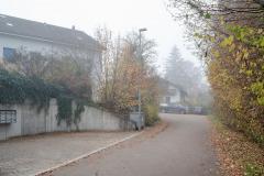 Waengi-Froheggweg-4586