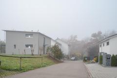 Waengi-Froheggweg-4591