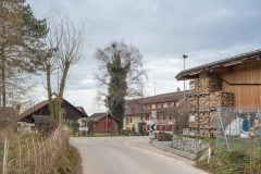 Anetswil-Frohsinn-5029
