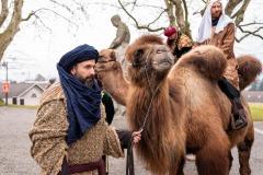 Kamel Karawane