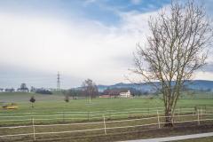 Waengi-Neuhausstrasse-5009