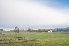 Waengi-Neuhausstrasse-5017
