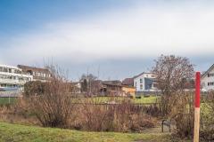Waengi-Neuhausstrasse-5023