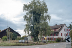 Waengi-Anetswil-0694