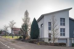 Waengi-Scheidweg-5031