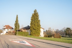 Steinlerstrasse-7878