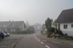 Waengi-Stettfurterstrasse-4568