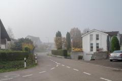 Waengi-Stettfurterstrasse-4569