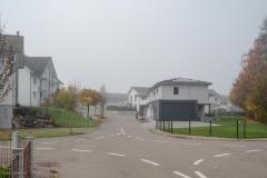 Waengi-Stettfurterstrasse-4577