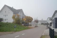 Waengi-Stettfurterstrasse-4578