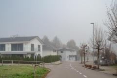 Waengi-Stettfurterstrasse-4598
